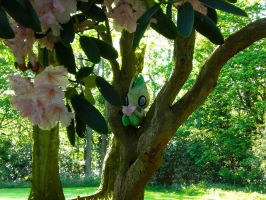 Celebi: Spirit of the Forest by Winnoy
