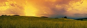 Field panorama stock 5 by FrantisekSpurny