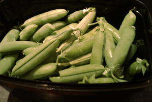 Beans by TomRolfe