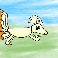 Ninetails by sunline