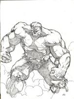The Hulk by MannixFrancisco