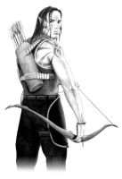 Elven Ranger by -shade-