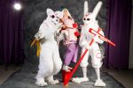 Tracon 2014: Okami group Picture by cynderfan35
