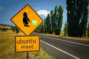 Ubuntu Ahead by 1roxtar
