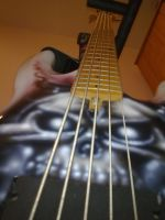 Finished Bassproject 5strings by ChAoTh