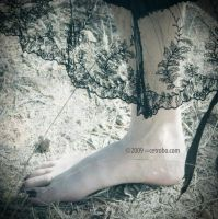 FEET AND LACE by cetrobo