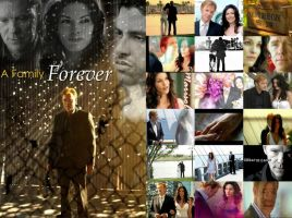 CSI Miami Horatio-Marisol Caine together forever by FallenAngelGirl91