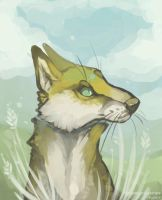Fox by Stitchy-Face
