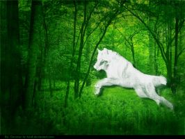 Forest Wolf Ghost by Devona-Is-Best