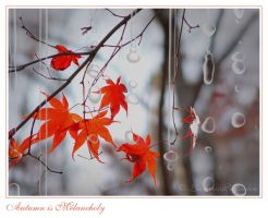 Autumn is melancholy by LacrimasProfundere