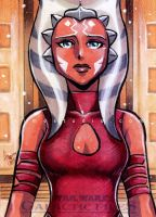 Galactic Files - Ahsoka Tano by aimo
