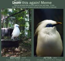 blue mask and white crested - meme by mishkuu