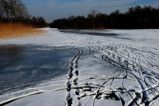 Traces on the ice by jchanders