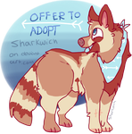 Offer To Adopt OPEN by sharkwich
