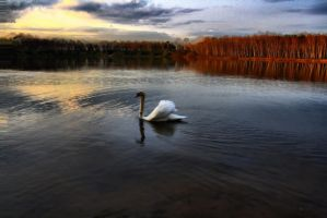 lake 3 by weltenfeuer