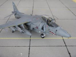 BAe Harrier Gr7 RAF 12 by marek1101