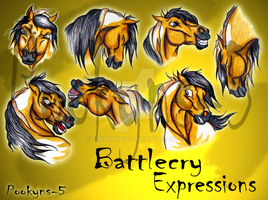Battlecry Expressions by pookyhorse