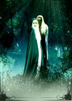 Celeborn and Galadriel by Ajraan