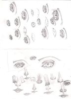 practise of eyes and noses and mouth by Jaquina