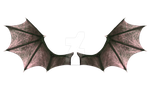 Demon Wings 2 by CelticStrm-Stock by CelticStrm-Stock