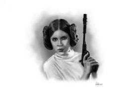 Princess Leia by RomanDubina
