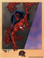 Spiderman Litho by duckness
