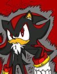 + Shadow the hedgehog + by termina-the-wolf