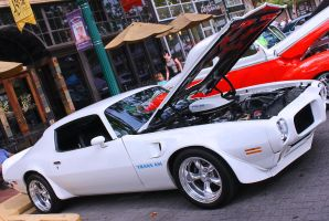 Trans Am 455 HO by StallionDesigns