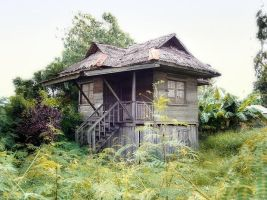 House in Philippines by patindaytona