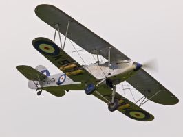 Hawker Hind Old Warden by davepphotographer