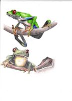 frog tattoo ideas by jainism1492