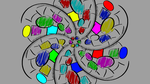 some colourful spinny thing that doesn't spin by shook12