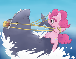 AT: Shark Wrangler by spicyhamsandwich