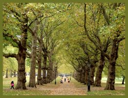 Autumn stroll in London by Luiza82