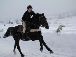 Stock 506: winter horse riding by AlzirrSwanheartStock