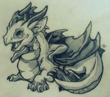 Baby Western Dragon Hatchling by Alexbee1236