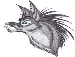 Syn Color Pencil Test by Synwolf