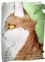 Leafpool by Bomb-Kat