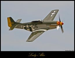 Planes of Fame 27 by AirshowDave