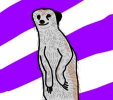 Meerkat for Mother by AlexFili