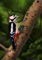 Greater Spotted Woodpecker (Digital Painting) by Rick-Lilley