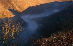 Flow of Fog by alban-expressed