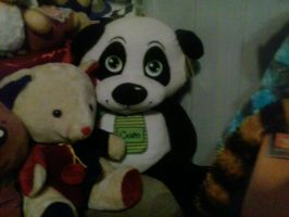 My Nird Giant Panda Plush 78 by PoKeMoNosterfanZG