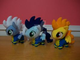 WONDERBOLTS by happybunny86