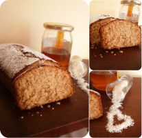 Honey and Coconut Plum-cake by MeYaIeM