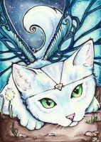 Play With Me ACEO by starwoodarts