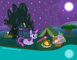 Twilight Sparkle's Stargazing Campout by WildAnime