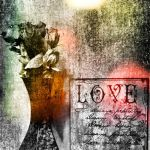 Love and Roses by Ace-Of-Angels-xx