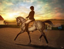 Hunters Lake Contest 2014   Dressage by Zoubstance