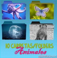 Animal Folders by OknoEditions